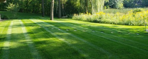 lawn332256